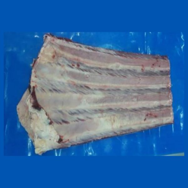 Beef con hueso 4c bone in 4c ribs