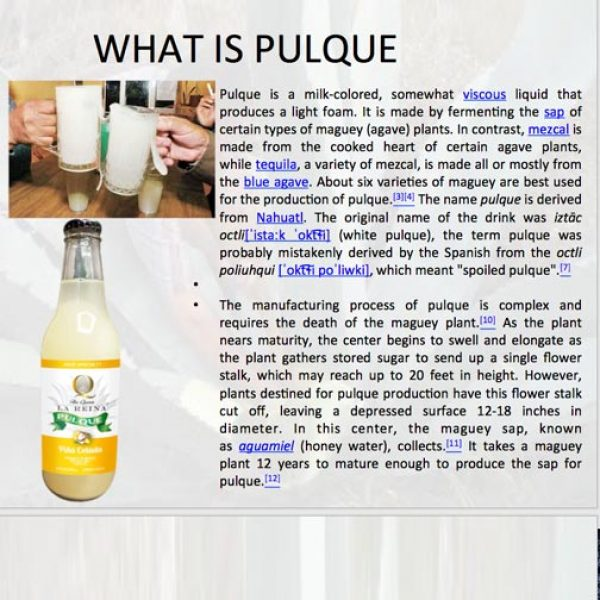 What is Pulque